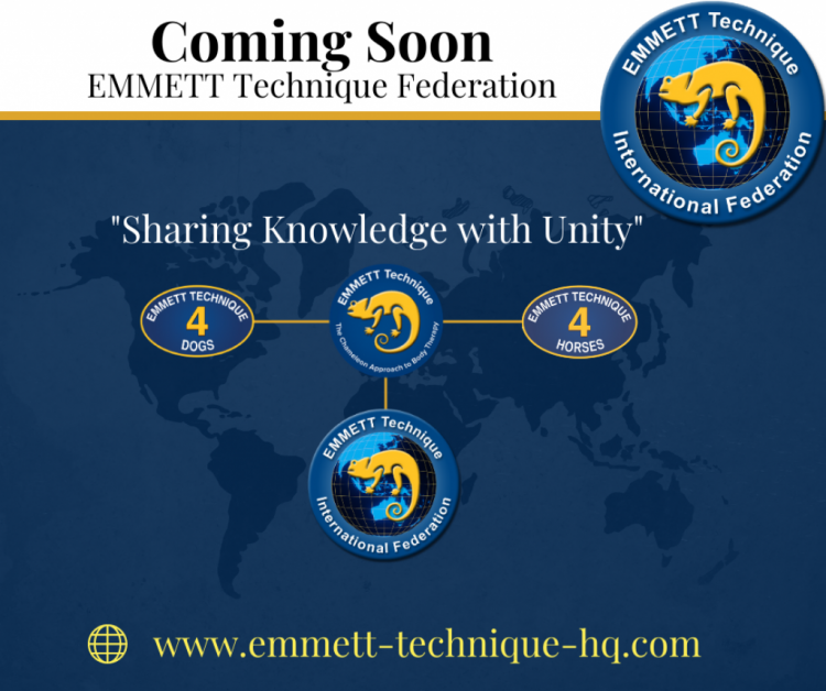 EMMETT Technique Federation. Exciting News! Coming Soon!